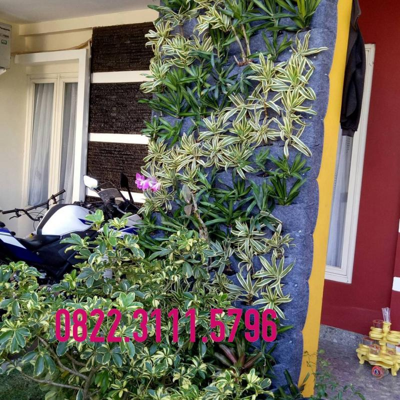 Vertical Garden On House Surabaya 082231115796