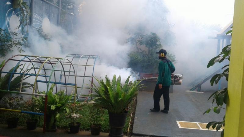 jasa fogging nyamuk kamikapest